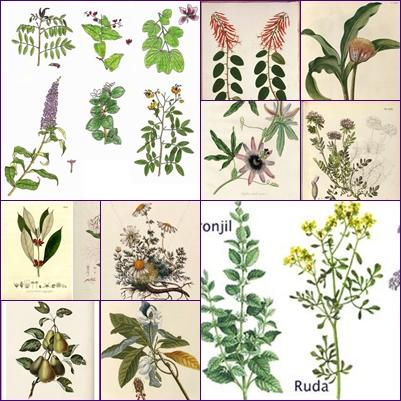 mosaico láminas