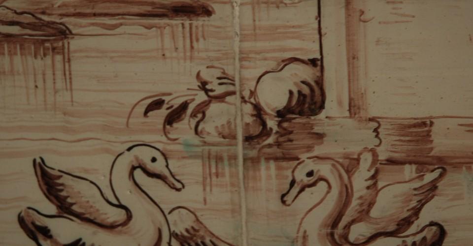 Cisnes azulejos