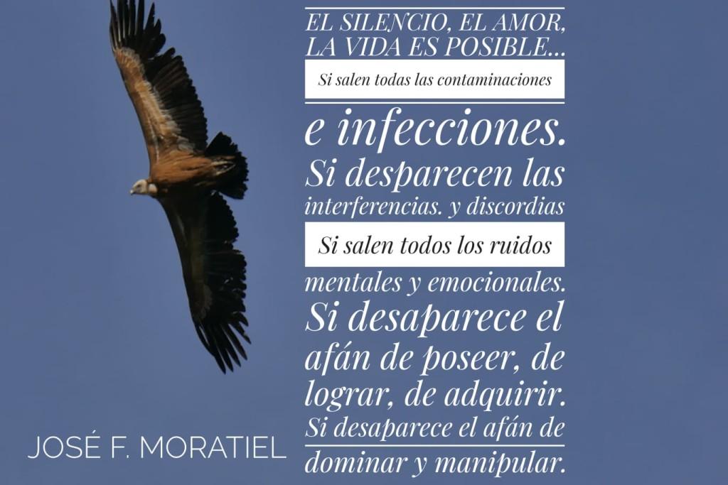 Moratiel